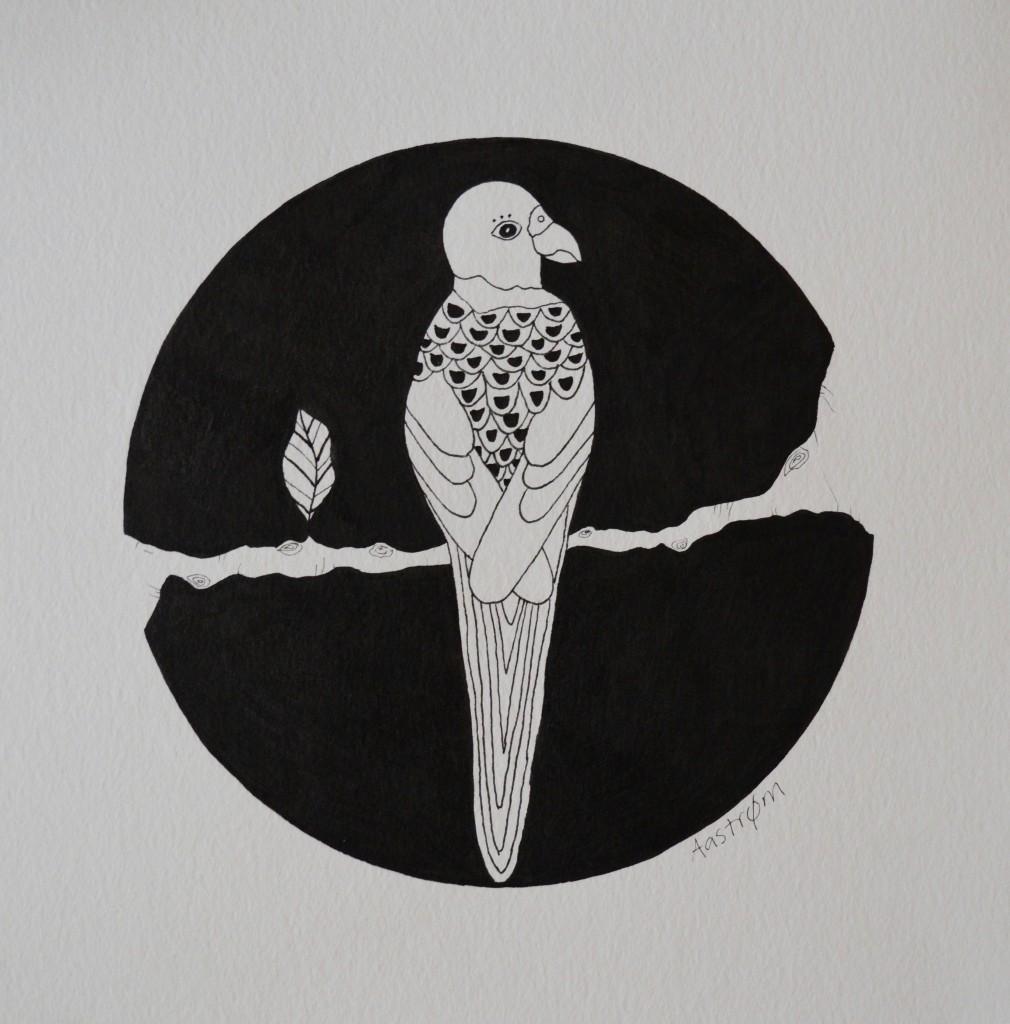 Sort hvid fugl