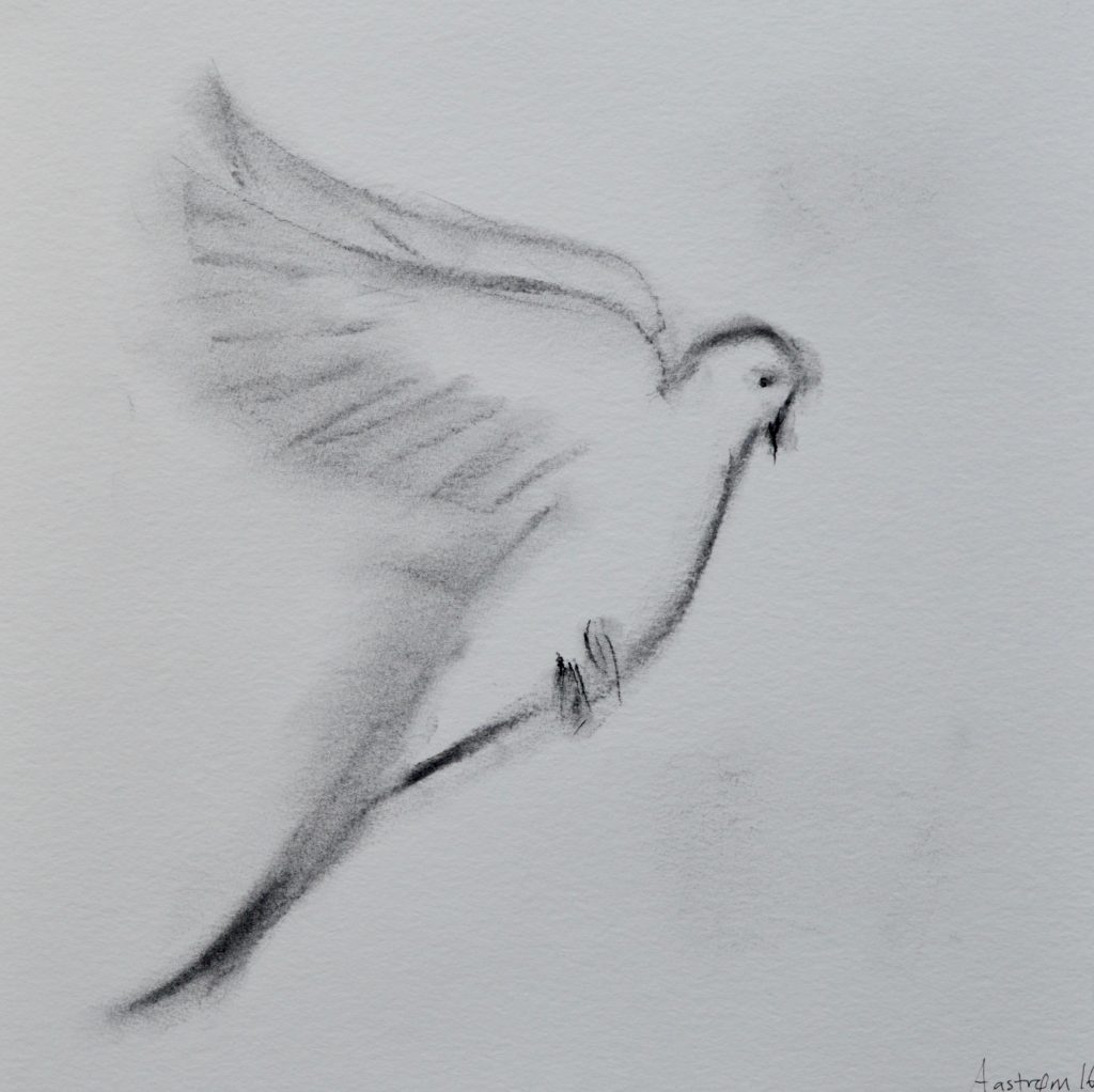 Fuglevild_4