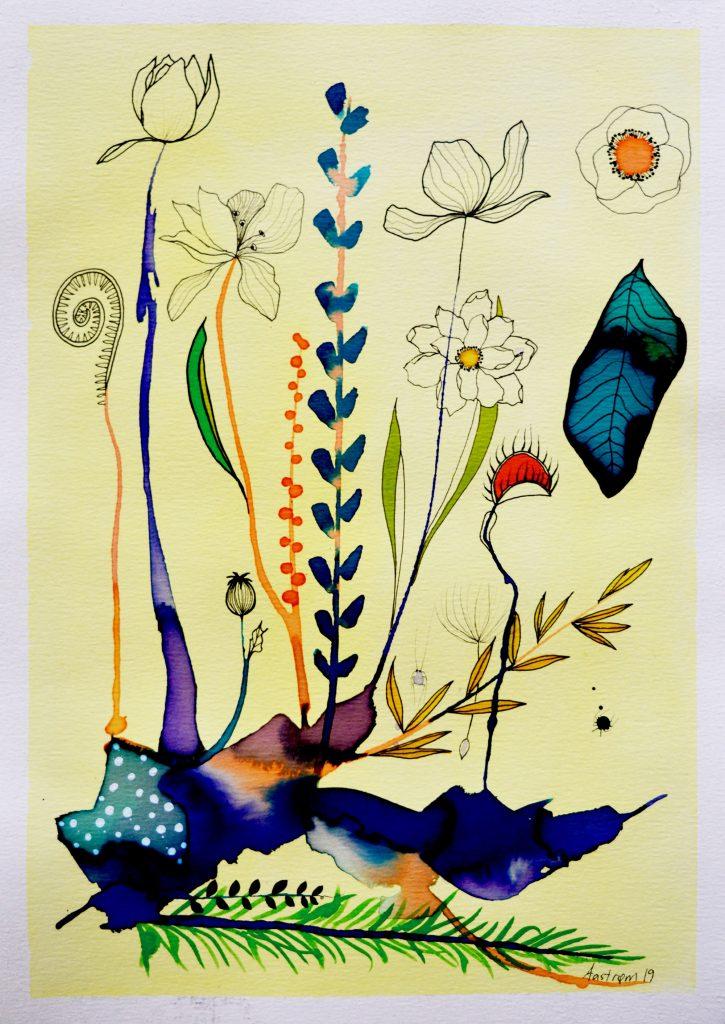 kødæder plante, botanik, botanisk maleri, bjørn wiinblad, blomster maleri