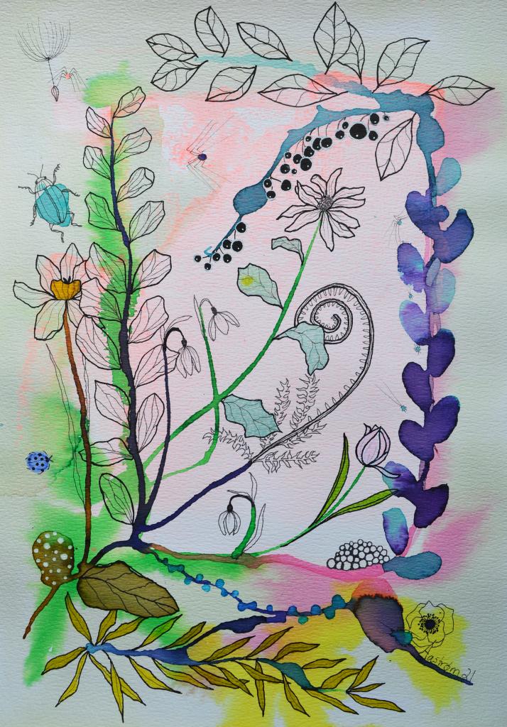bjørn wiinblad, botanisk illustration, botanik, vintergæk, blomstermaleri, blomster illustration